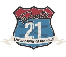 Route 21 - Chromosome on the road