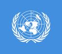 Esperienze professionali nelle organizzazioni internazionali