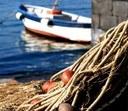 Contributi per porti e giovani pescatori